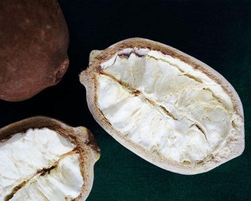 Theobroma Grandiflorum (Cupuaçu) Seed Butter